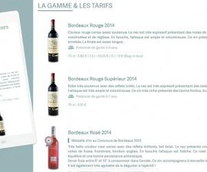 webdesign-chateau-gabachot_03
