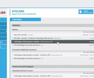 teleslide-ergonomie-application-03